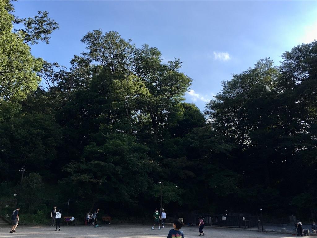 f:id:hikaru217:20200803003222j:plain