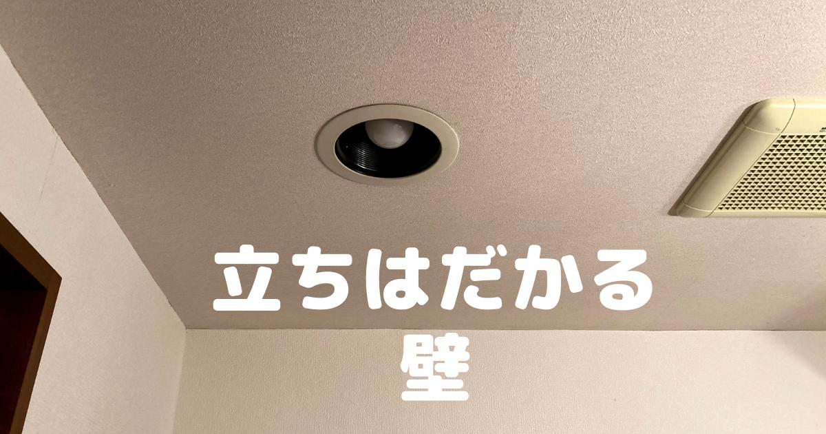 f:id:hikaru217:20210514004927p:plain