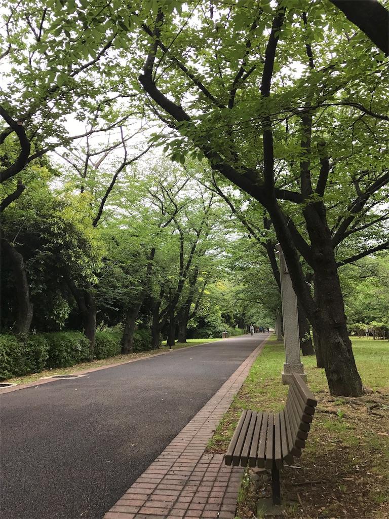 f:id:hikaru233391:20170525223008j:image