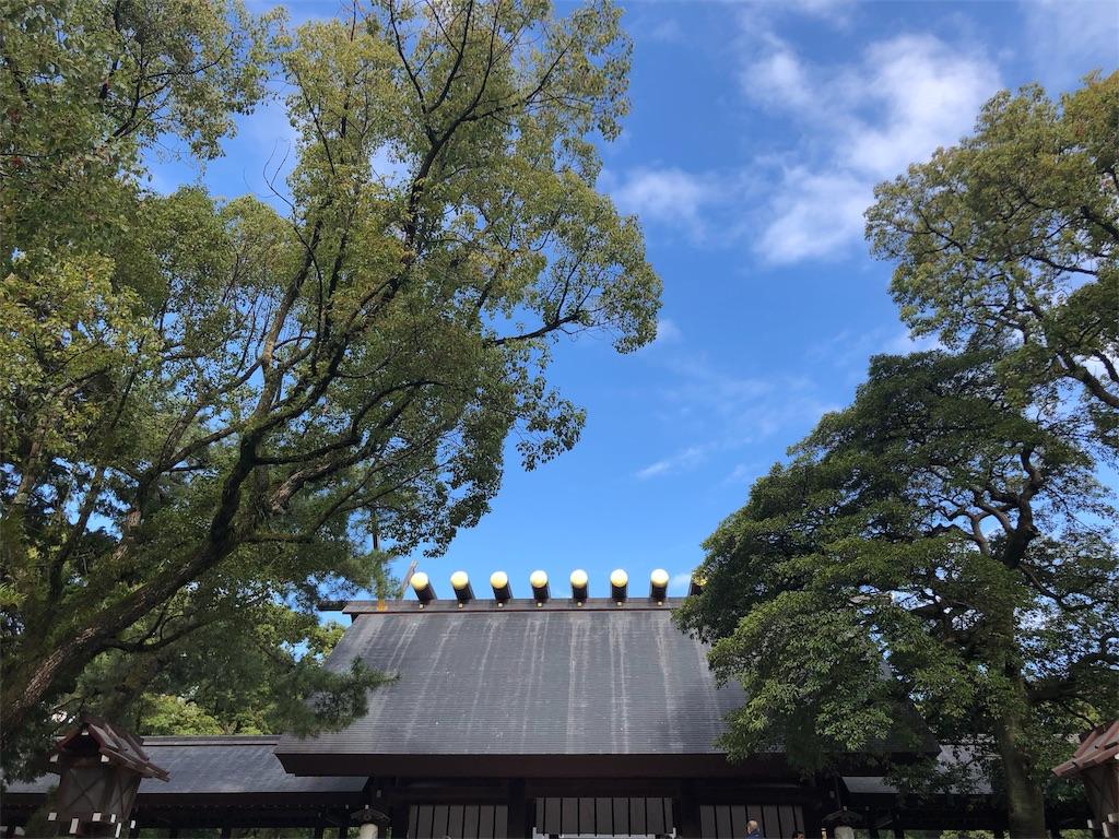 f:id:hikaru_hitomi:20181105162858j:image