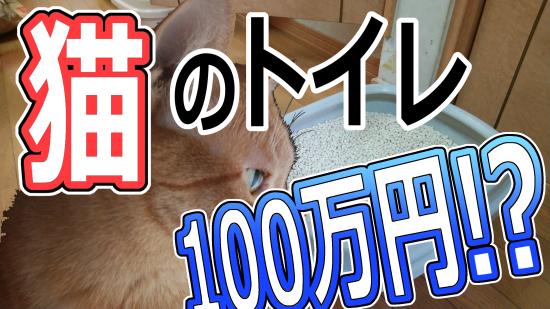 f:id:hikaru_n:20200329134447j:plain