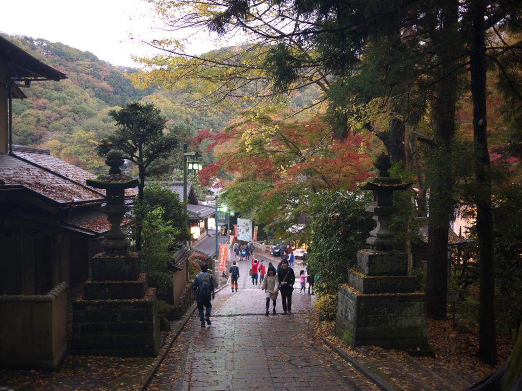 f:id:hikaru_takeuchi:20151115164047j:plain