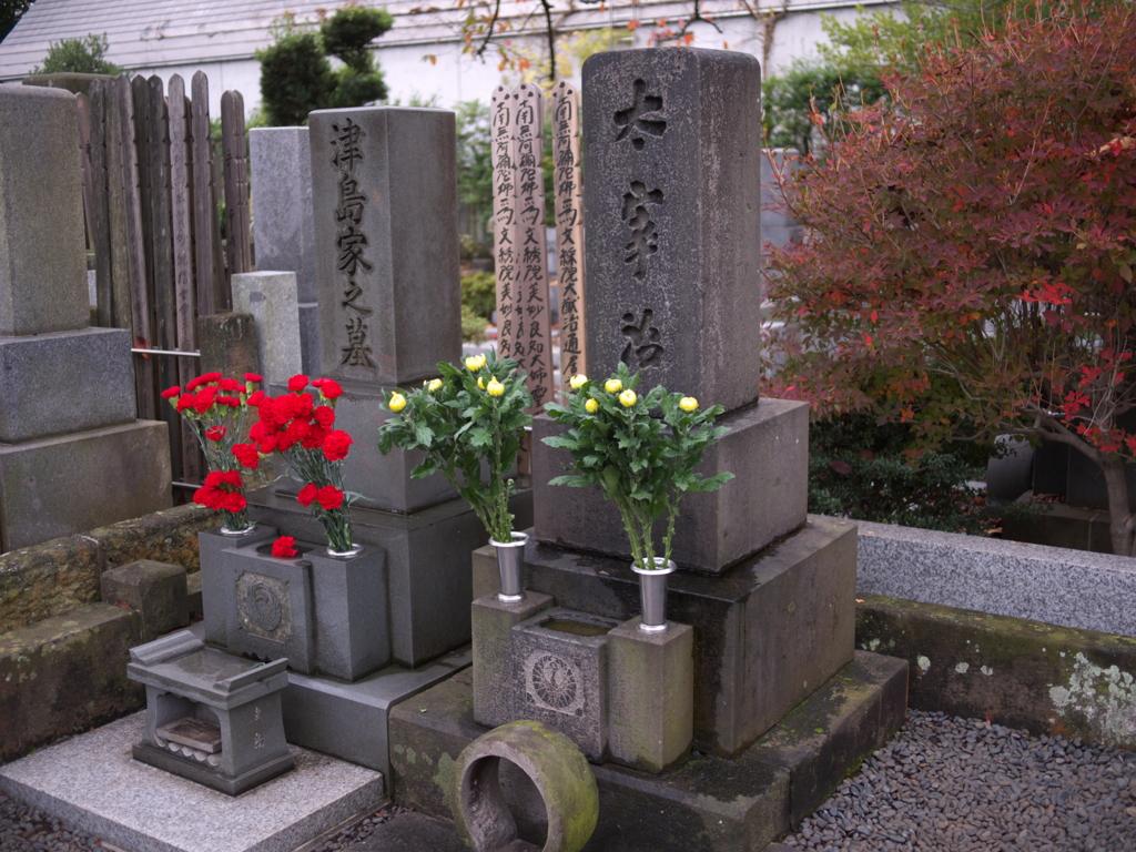 f:id:hikaru_takeuchi:20151120155711j:plain