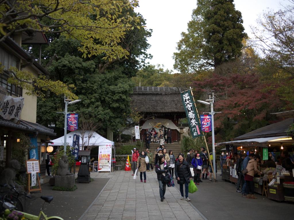 f:id:hikaru_takeuchi:20151129154943j:plain