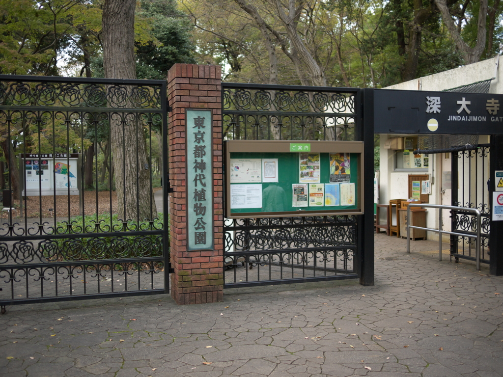 f:id:hikaru_takeuchi:20151129155839j:plain