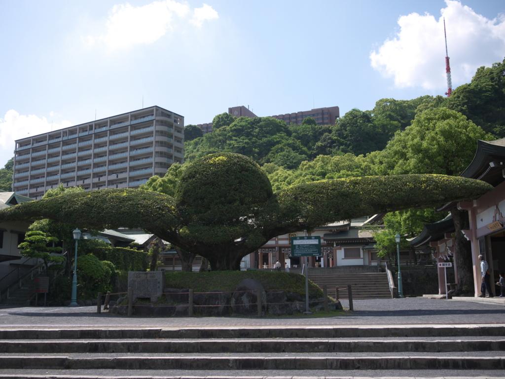 f:id:hikaru_takeuchi:20160504143811j:plain