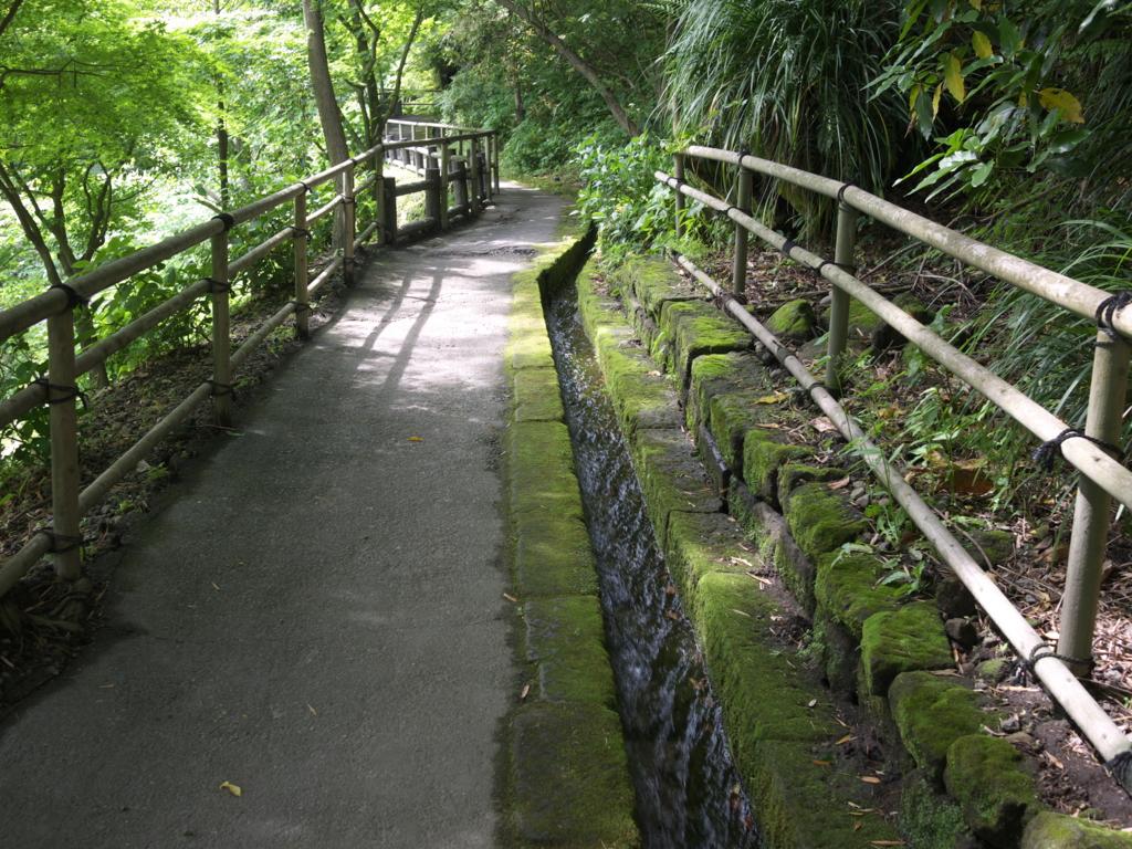 f:id:hikaru_takeuchi:20160505145254j:plain