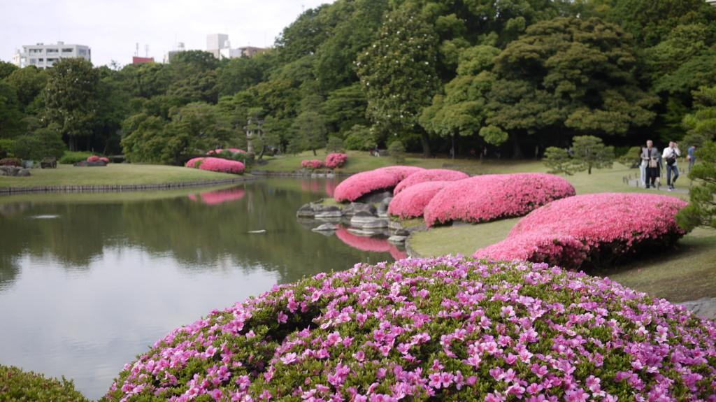 f:id:hikaru_takeuchi:20160605161807j:plain