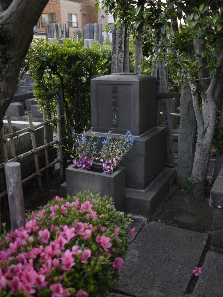 f:id:hikaru_takeuchi:20160605182218j:plain