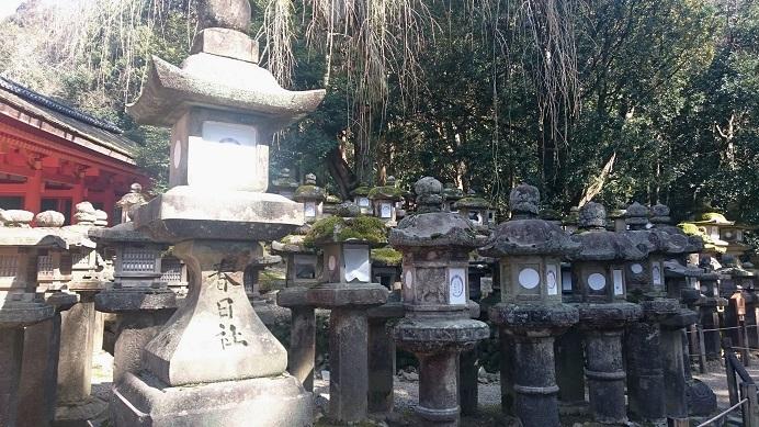 f:id:hikaruhotaru:20180315192812j:plain
