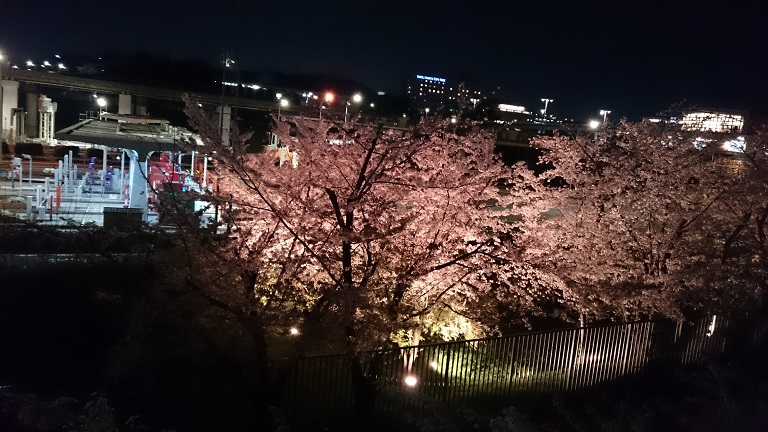 f:id:hikaruhotaru:20180331110256j:plain
