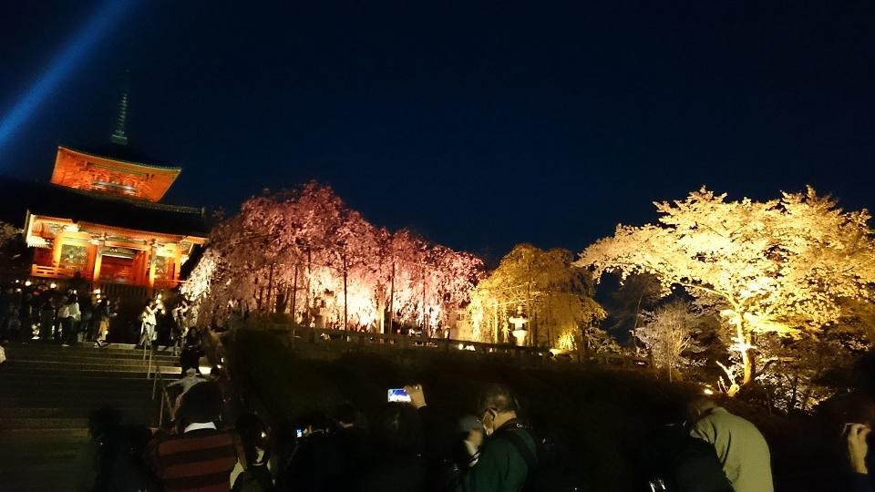 f:id:hikaruhotaru:20180401102520j:plain