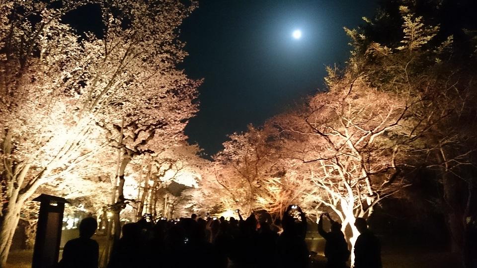 f:id:hikaruhotaru:20180401105345j:plain