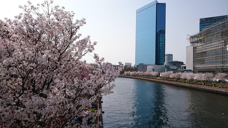 f:id:hikaruhotaru:20180402165937j:plain