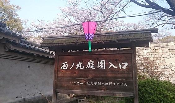 f:id:hikaruhotaru:20180402171153j:plain