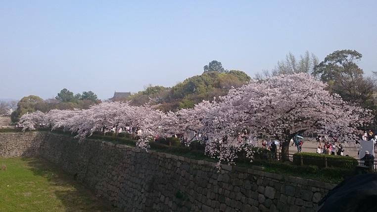 f:id:hikaruhotaru:20180402175001j:plain