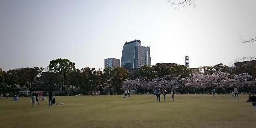 f:id:hikaruhotaru:20180402175705j:plain