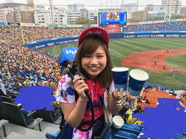 f:id:hikarujinzai:20160404053042j:plain