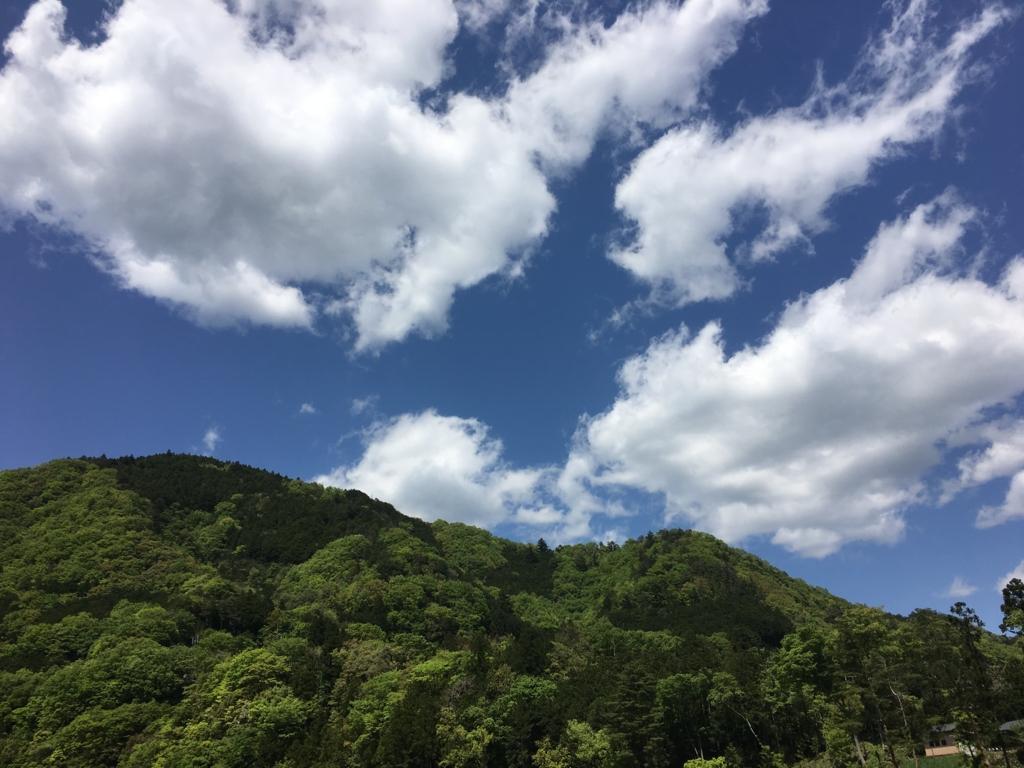 f:id:hikarujinzai:20160507082555j:plain