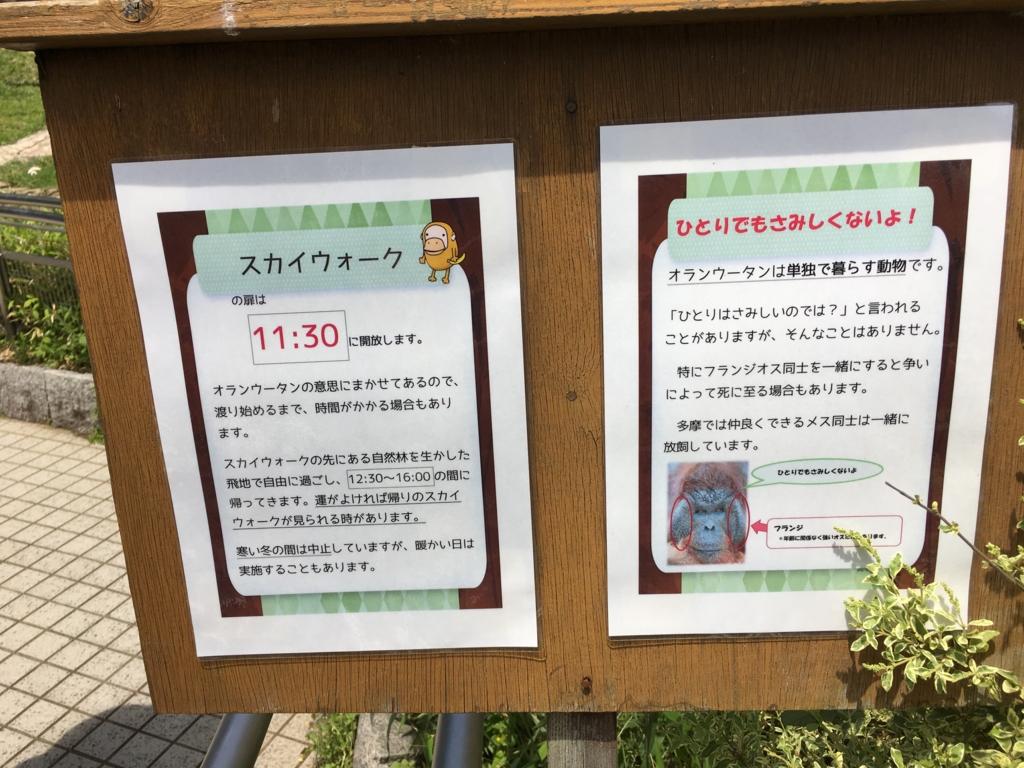 f:id:hikarujinzai:20160508071401j:plain