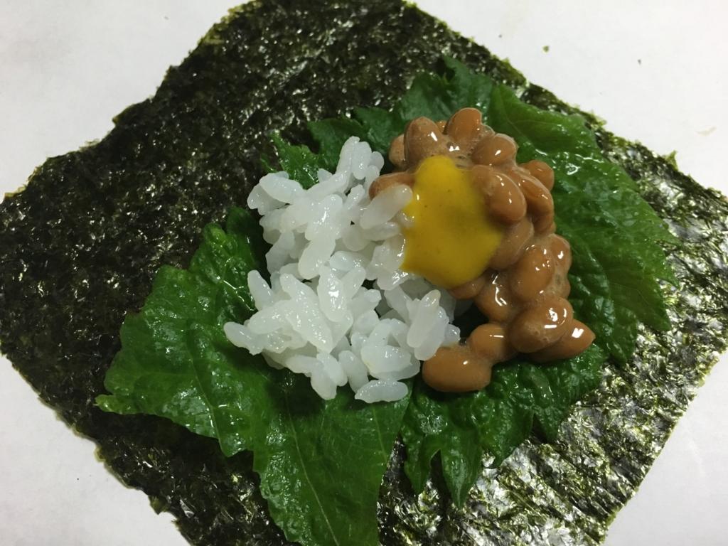 f:id:hikarujinzai:20160626060812j:plain