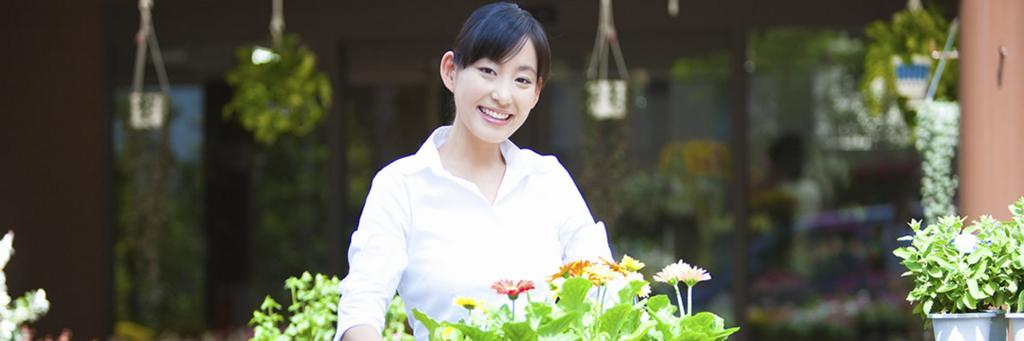 f:id:hikarujinzai:20170701075225j:plain