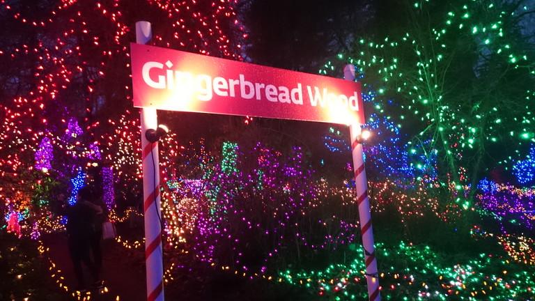 GingerBreadWood