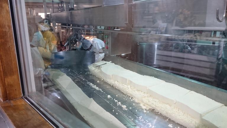 チーズ製造過程