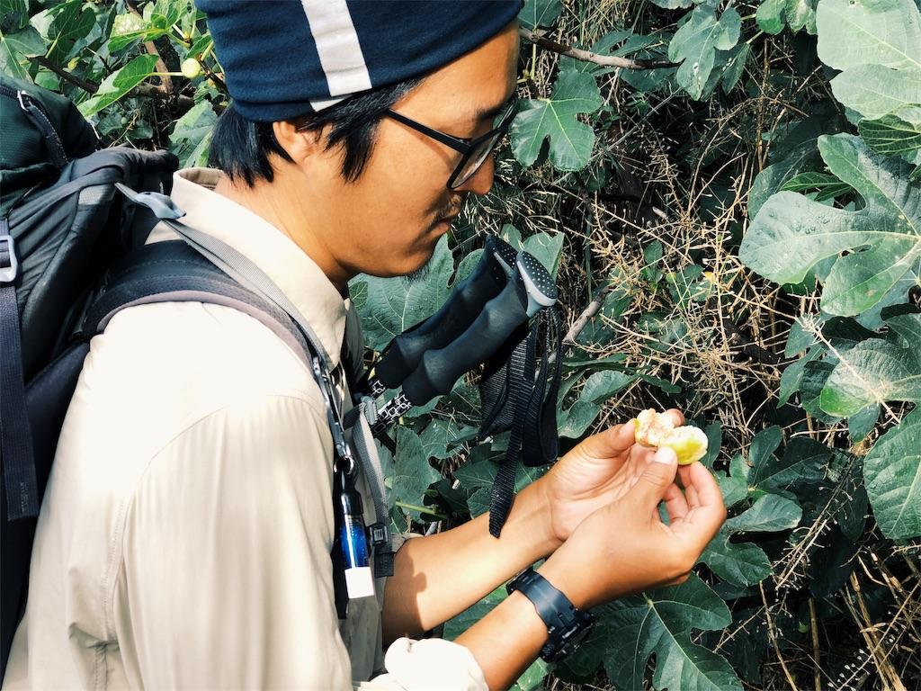 f:id:hike_osuga:20191009155543j:image