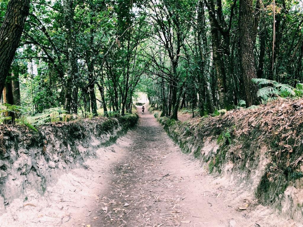 f:id:hike_osuga:20191103051401j:image
