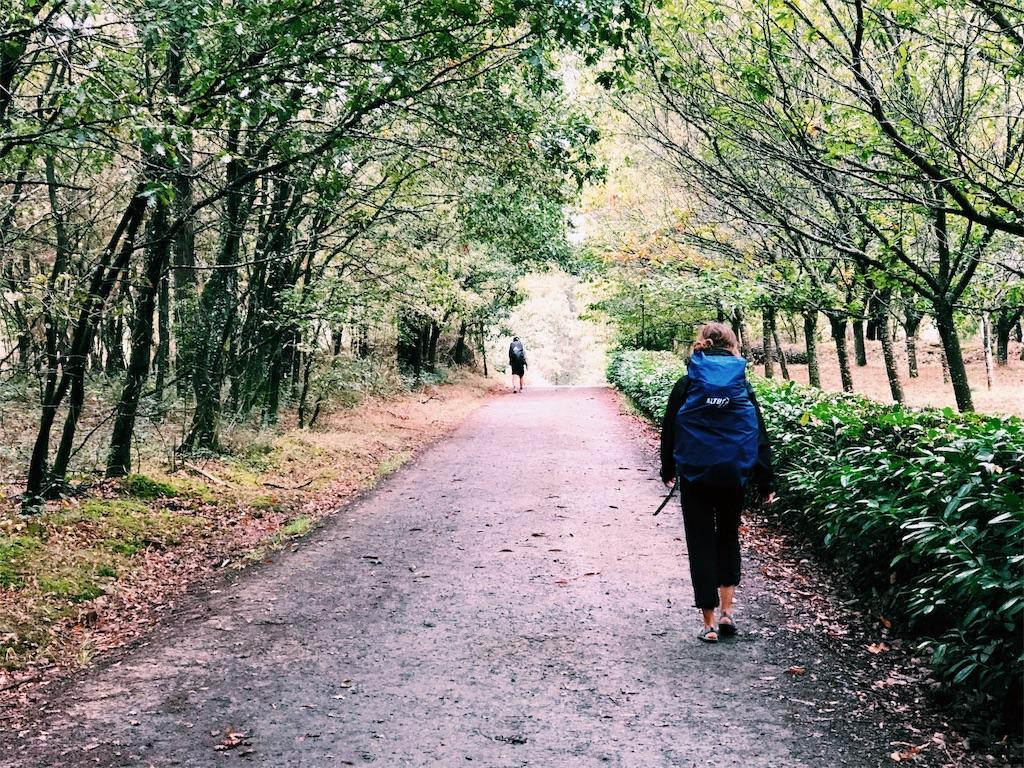 f:id:hike_osuga:20191103194628j:image