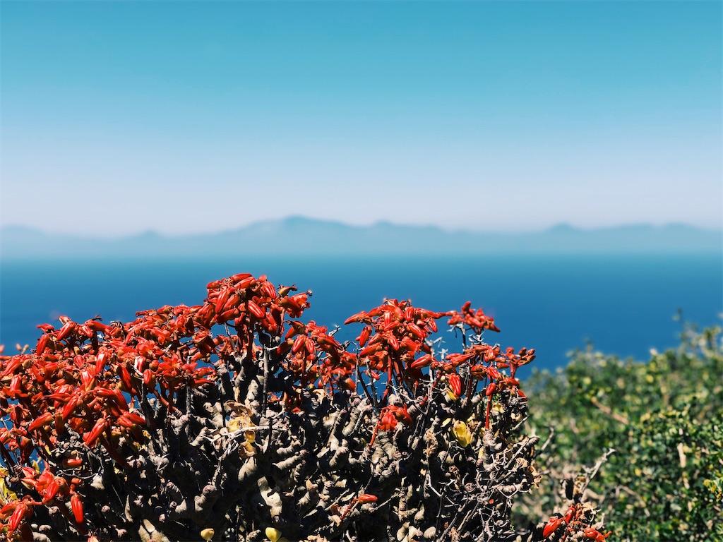 f:id:hike_osuga:20200106034204j:image