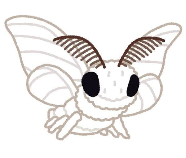 もふもふの蚕