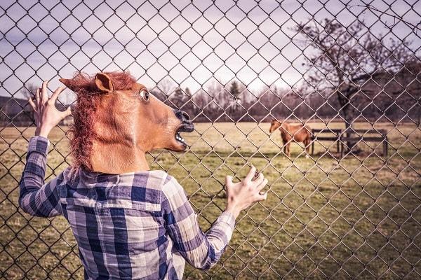 馬の被り物をした人が悔しがっている