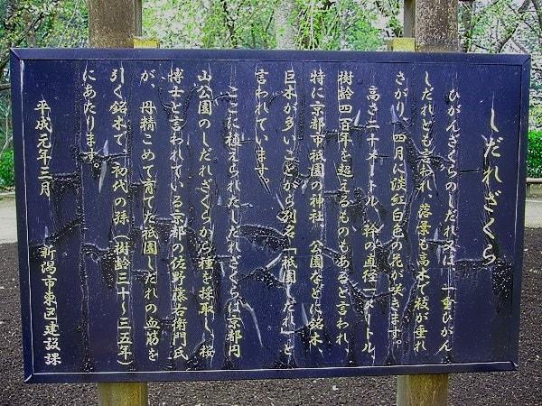 看板(じゅんさい池)