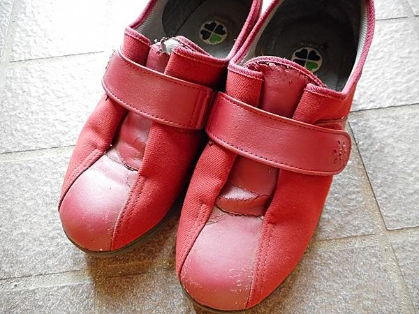 ボロボロの靴