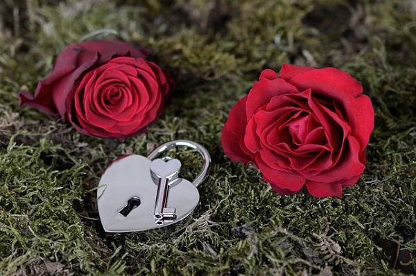 薔薇と錠前