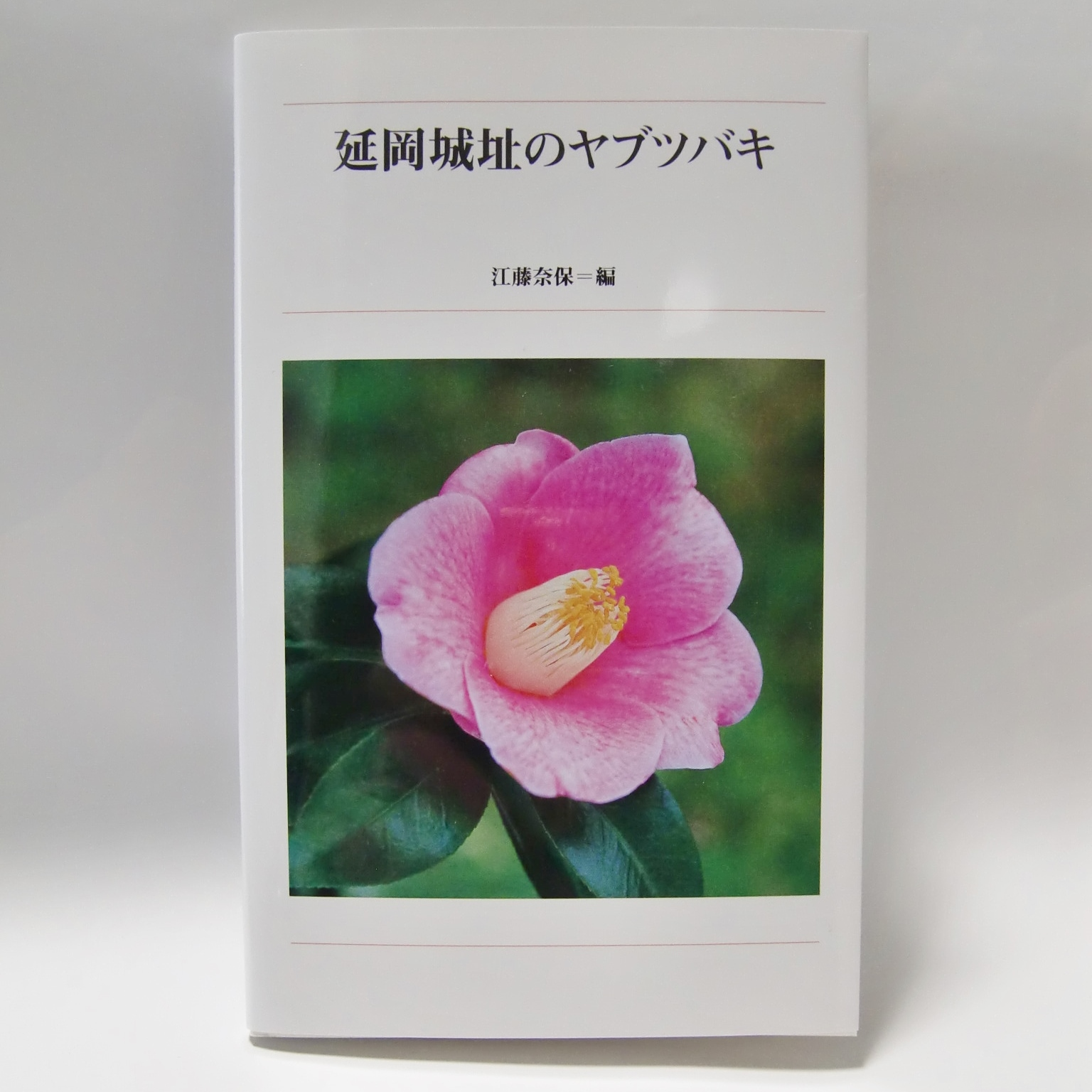 f:id:hikikoma:20170323131204j:plain