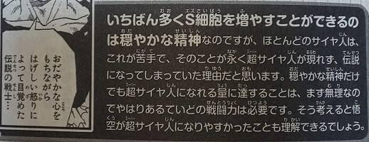 f:id:hikikomogomorin:20191206185025j:plain