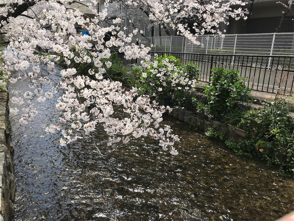 f:id:hikikomori-writer:20190404133611j:image