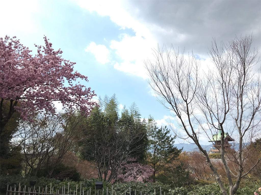 f:id:hikikomori-writer:20190404141223j:image
