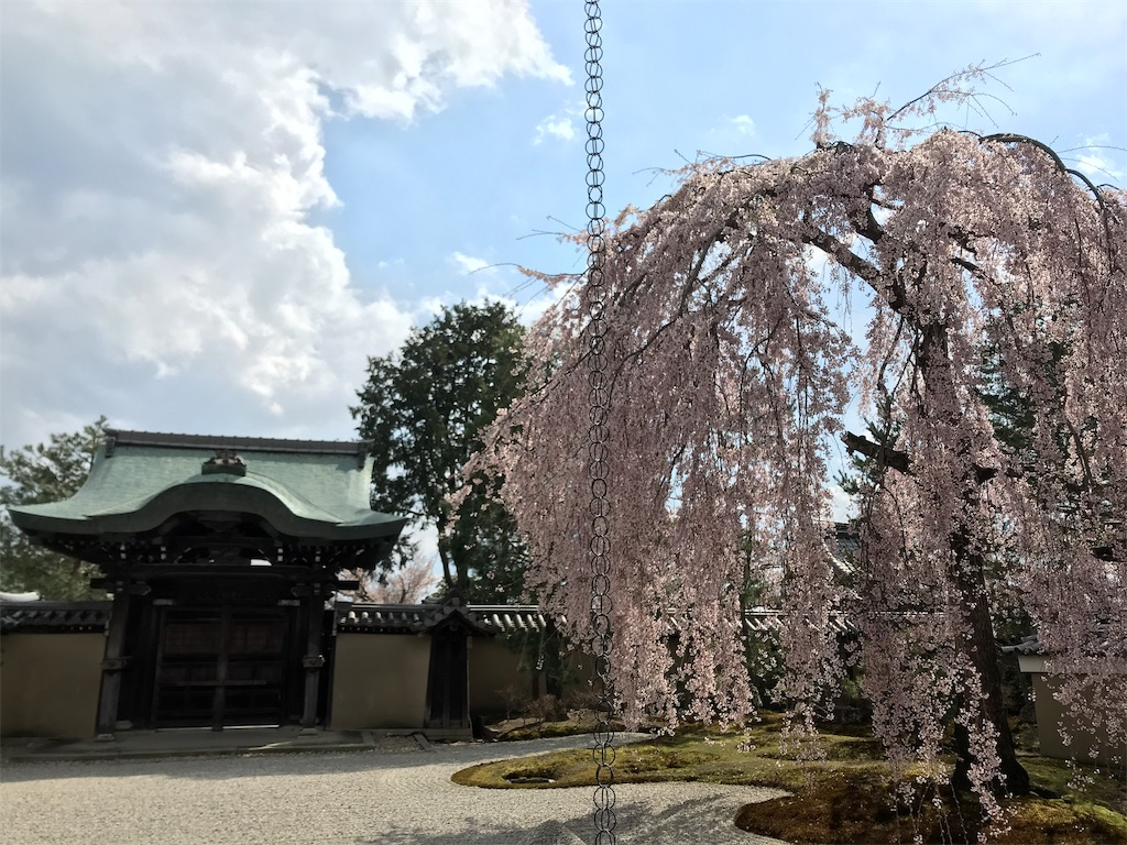 f:id:hikikomori-writer:20190404141737j:image