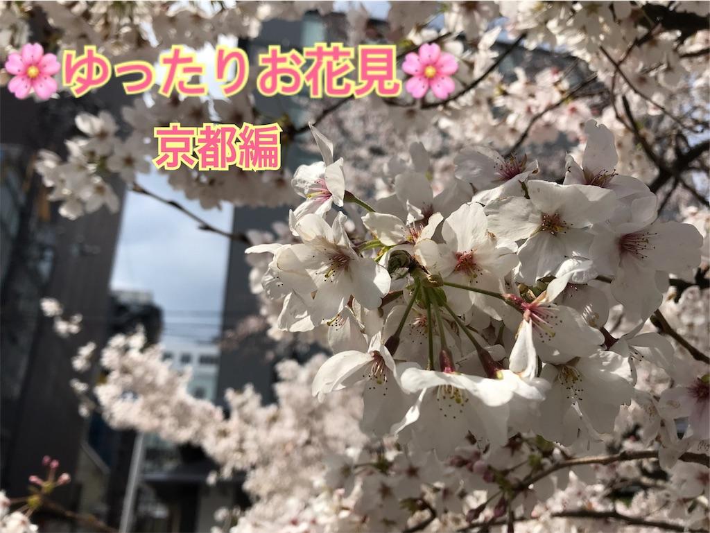 f:id:hikikomori-writer:20190404183512j:image