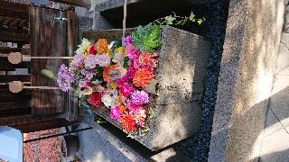 f:id:hikitakawara:20191221154755j:image