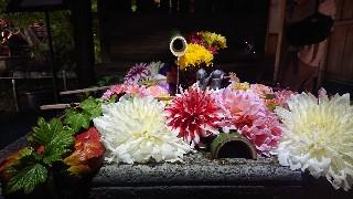 f:id:hikitakawara:20200127120705j:image