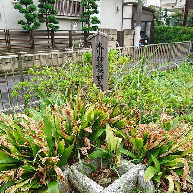 f:id:hikiyose2:20200505010755j:plain