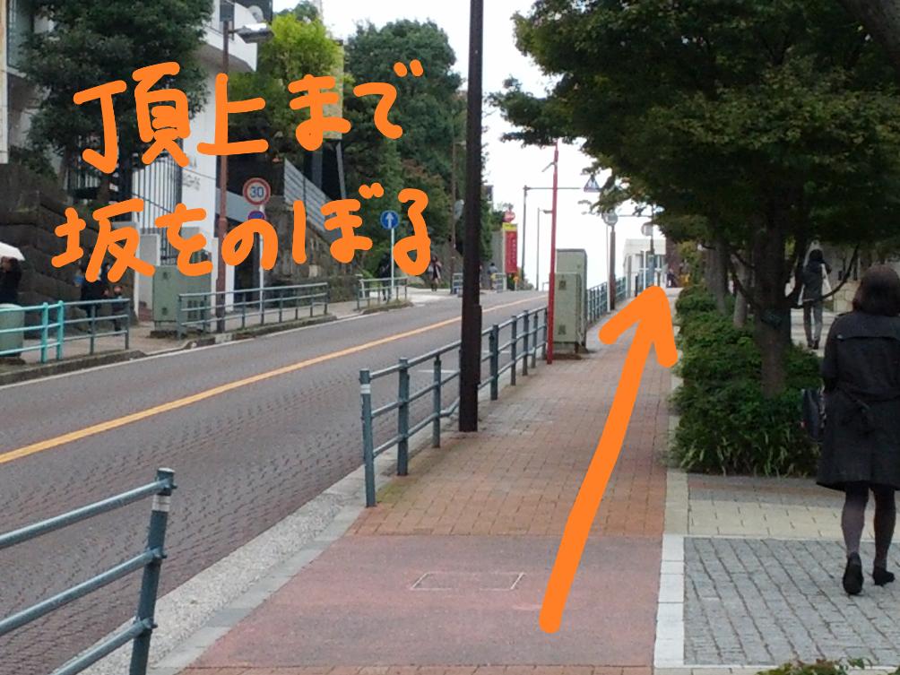 f:id:hikizakura:20190223135548p:plain