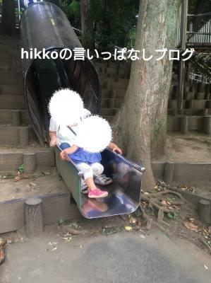 f:id:hikko_no1:20190428123231j:plain