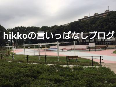 f:id:hikko_no1:20190428130024j:plain