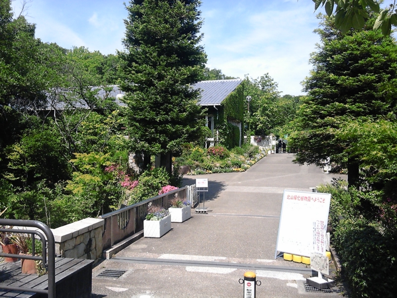 f:id:hiko-asiato:20150531140016j:image:w640